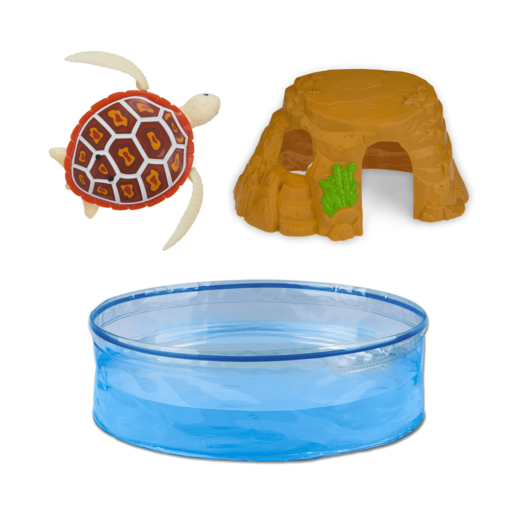 538032_turtle (1).png