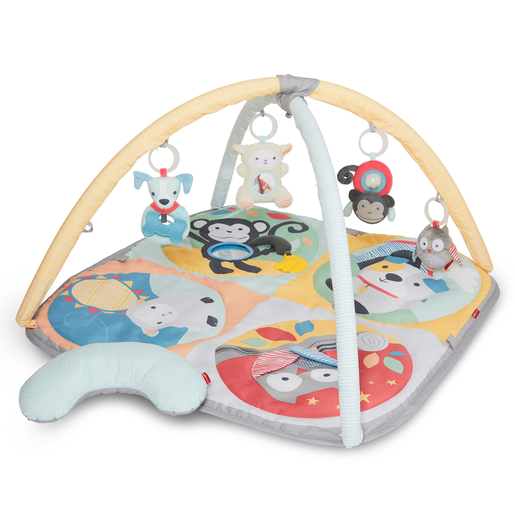 Skip Hop Hug & Hide Activity Gym