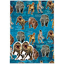 Natural History Museum Wrapping Paper
