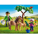 Playmobil 6949 Country Vet with Pony and Foal
