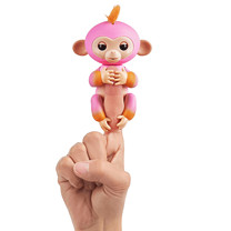 Fingerling Two Tone Monkey - Summer