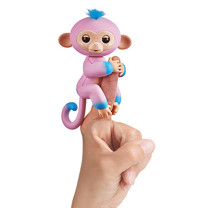 Fingerling Two Tone Monkey - Candi