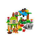 Lego Duplo Around the World  Jungle  - 10804