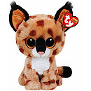 Ty Beanie Boo Buddy - Buckwheat the Lynx Soft Toy