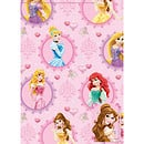 Disney Princess 2 Sheet 2 Tag Pack