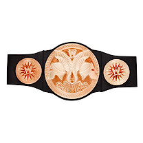 WWE Tag Team Champions Belt