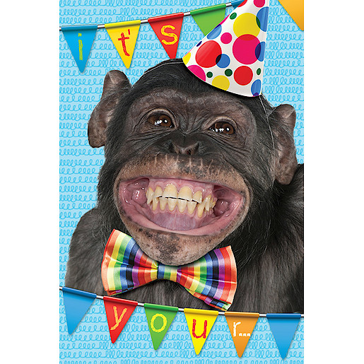 Monkey Birthday Card Cards Wrapping Paper And Cards Party